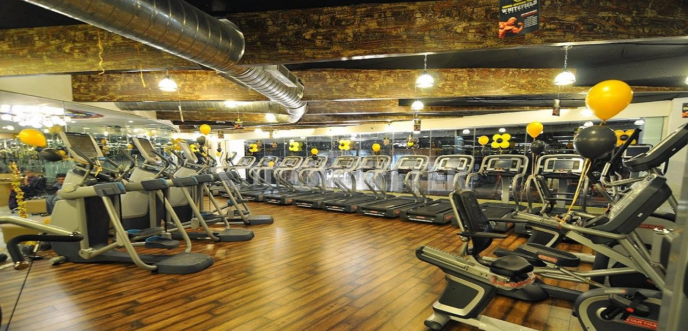 Gym equipments in bangalore dating 4