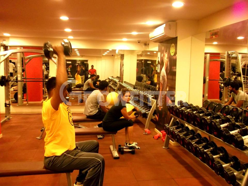 Gold S Gym Adyar Lattice Bridge Road Chennai Gym Fees